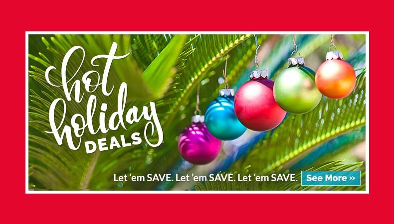 Hot Holiday Deals!