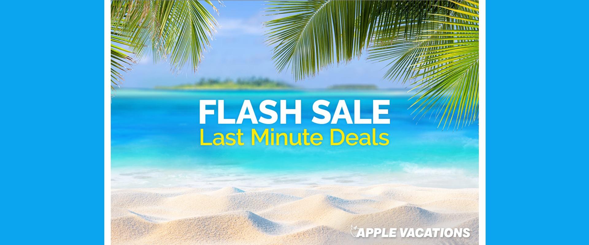 Flash-Sale-Banner