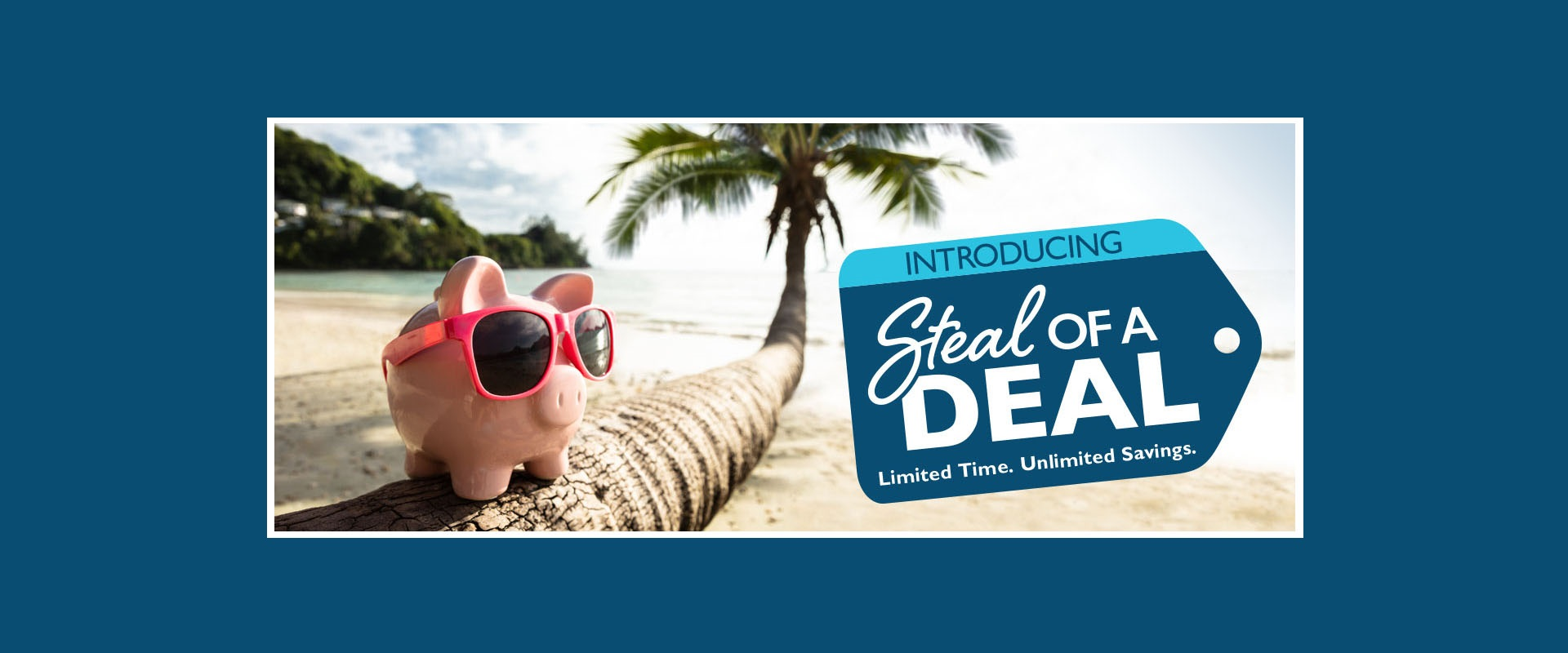 Steal-of-a-Deal-Banner